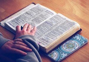 bible-bible-study-book-510249