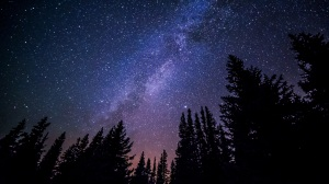 nature-sky-night-star-milky-way-cosmos-atmosphere-constellation-space-galaxy-long-exposure-trees-starry-science-astronomy-stars-un